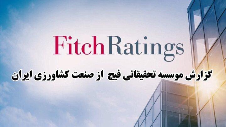 گزارش موسسه فیچ از صنعت کشاورزی ایران + فیلم