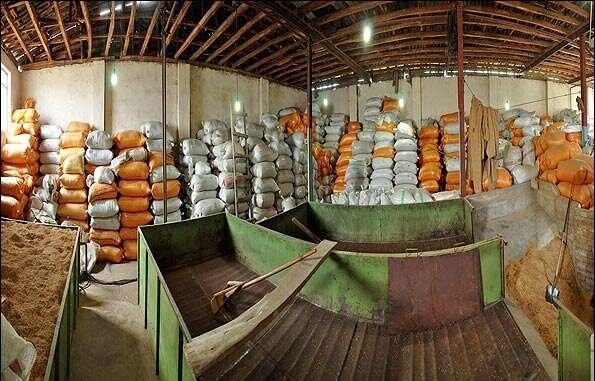 اینفوگرافیک / روند عجیب افزایش قیمت برنج در یک سال اخیر