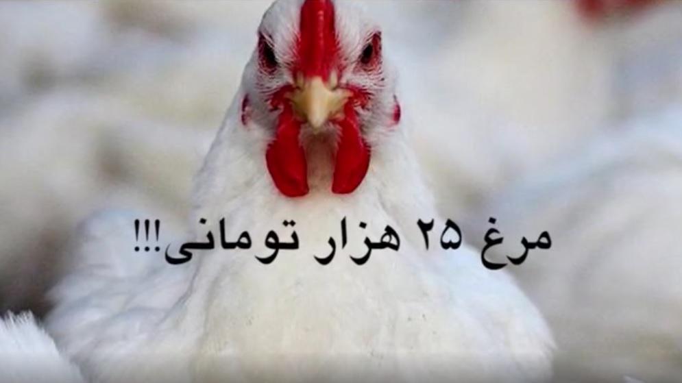 مرغ ۲۵ هزار تومانی! + ویدیو