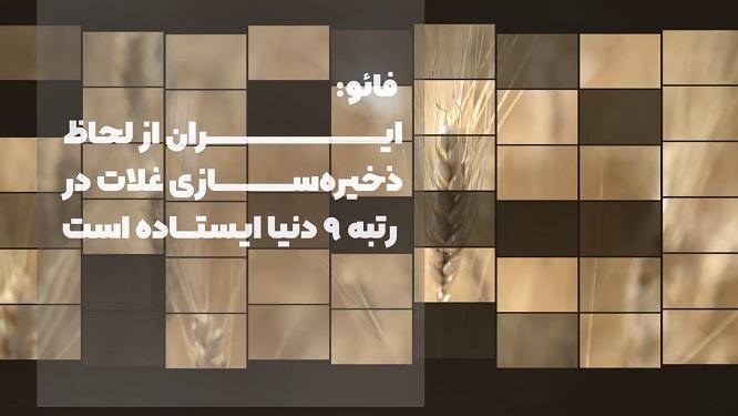 فائو: ایران از لحاظ ذخیره سازی غلات در رتبه ۹ دنیا ایستاده است + ویدیو