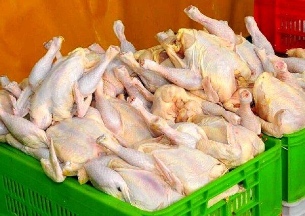 فروش مرغ با کارت ملی!/احتمال کوپنی شدن فروش مرغ