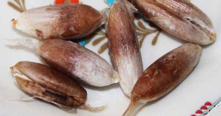 فواید هسته خرما برای روزه داران در ماه رمضان