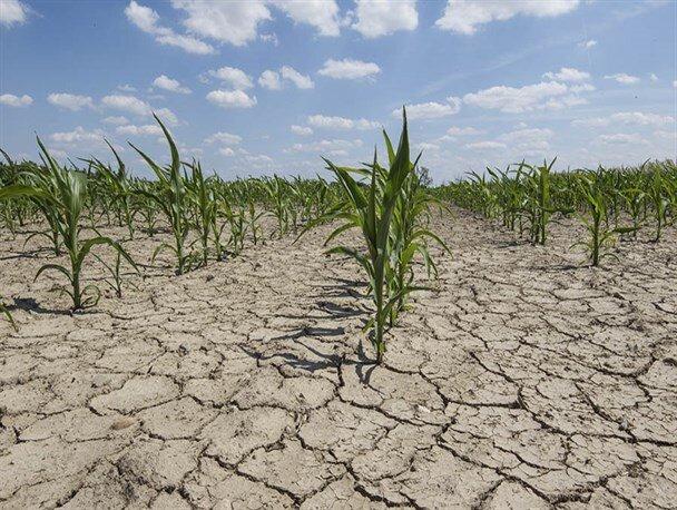 آیا خشکسالی در ایران جدی است؟