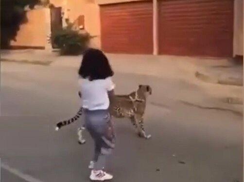 حیوان خانگی خطرناک دختر عربستانی خبرساز شد + ویدیو