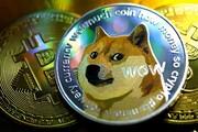 زیر و بم ارز دیجیتال شیبا