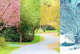 علت تغییر فصل ها چیست؟/ کشور ۶ فصل جهان را بشناسید