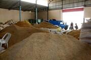 برنج بوجاری نشده با قیمت ۴۰ هزار تومان در بورس کالا در حال معامله است