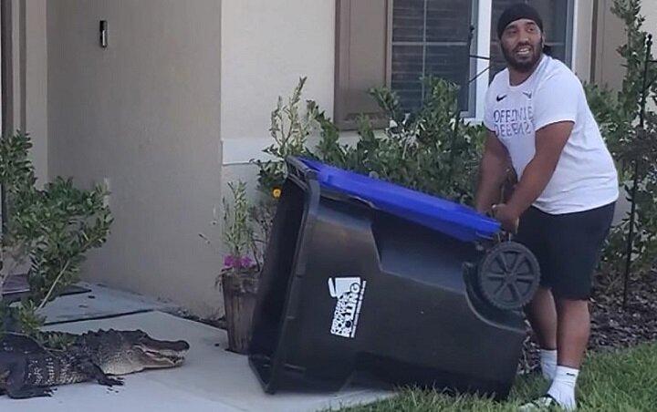 فیلم   به دام انداختن تمساح با سطل آشغال!