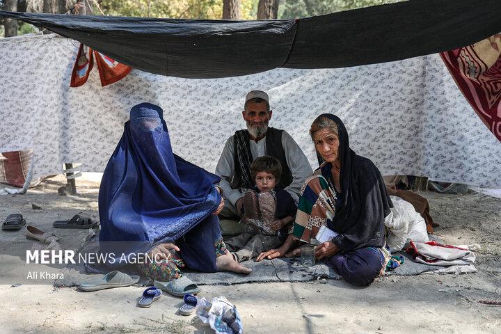 حکومت طالبان_کابل