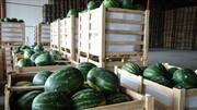 رشد ۲۹ درصدی صادرات هندوانه در خشکترین سال!